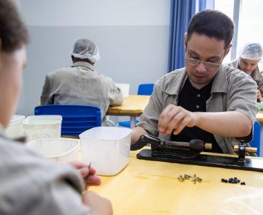 Qualificação Profissional para pessoas com deficiência intelectual: por que é tão importante?
